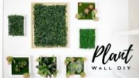 DIY- Un faux mur végétal ?